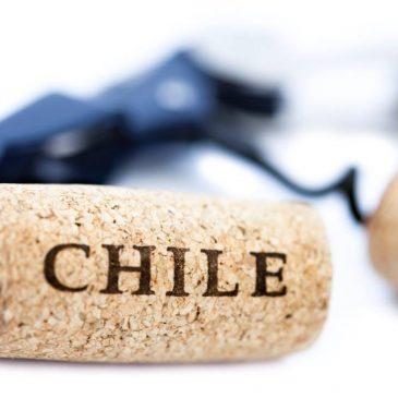 Rượu vang Chile vang tân thế giới
